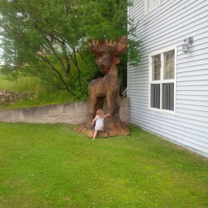 Emma and the moose