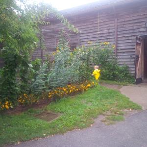 james riverdale farm