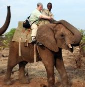 elephant ride sue